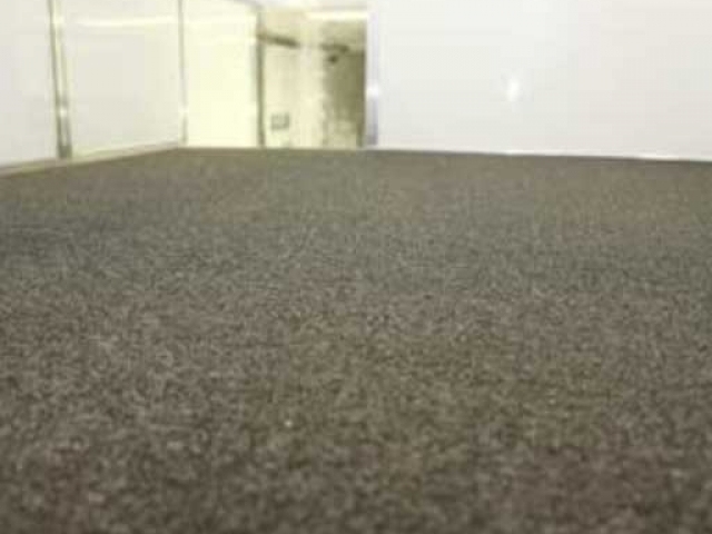 Gray Carpet, Flooring, Custom Trailer Options