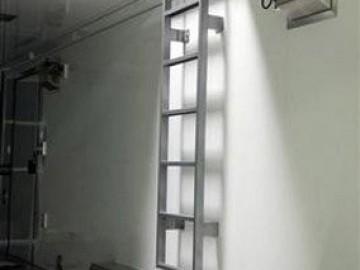Interior Ladder, Roof and Ladder, Custom Trailer, Options